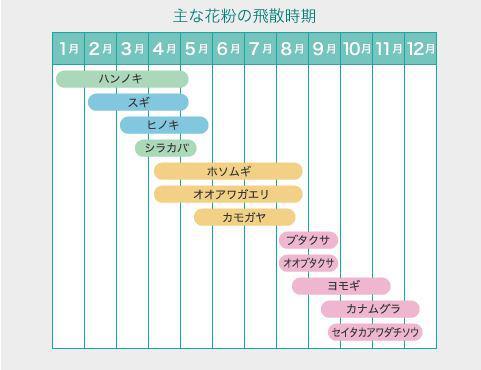 花粉症グラフ